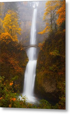 Multnomah Morning Metal Print by Darren  White