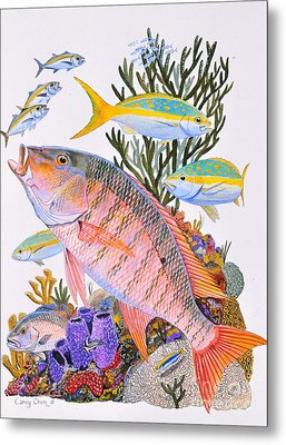 Mutton Snapper Reef Metal Print by Carey Chen