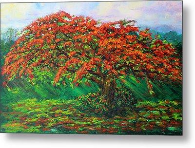My Flamboyant Tree Metal Print by Estela Robles Galiano