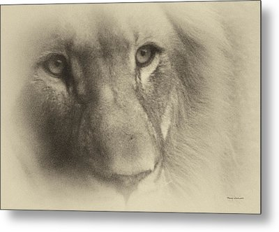 My Lion Eyes In Antique Metal Print by Thomas Woolworth