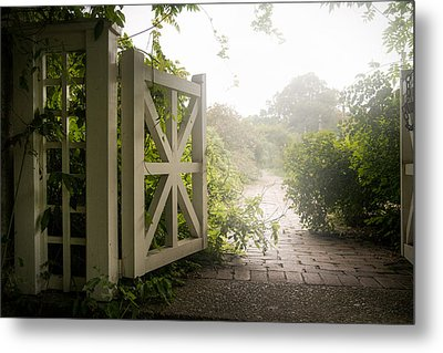 Mystic Garden - A Wonderful And Magical Place Metal Print by Gary Heller