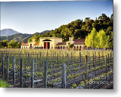 Napa Valley Spring Sunset Metal Print by George Oze