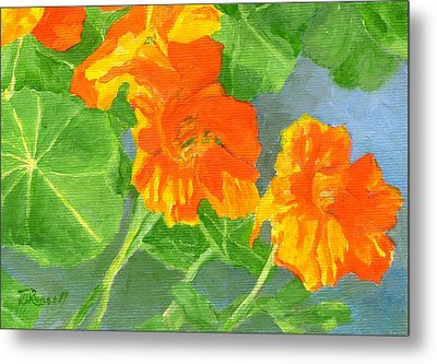 Nasturtiums Flowers Garden Small Oil Painting Metal Print by K Joann Russell