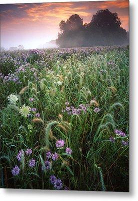 Native Prairie Sunrise Metal Print by Ray Mathis