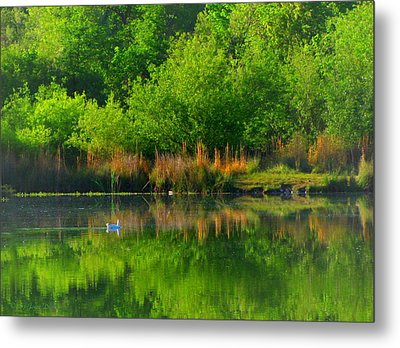 Naturally Reflected Metal Print by Joyce Dickens