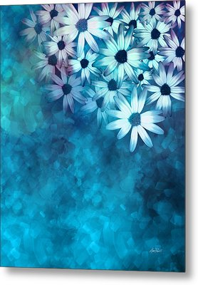 nature - flowers- White Daisies on Blue  Metal Print by Ann Powell