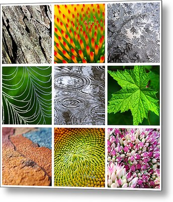 Nature Patterns And Textures Square Collage Metal Print by Christina Rollo