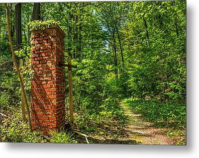 Nature Reclaims Metal Print by Tim Buisman
