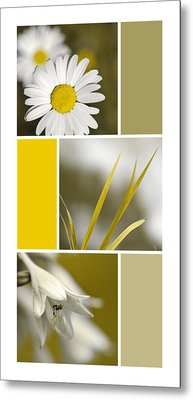 Nature's Beauty Golden Flowers Collage Metal Print by Christina Rollo