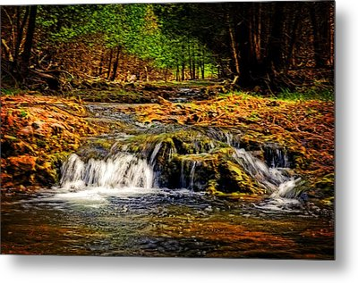 Nature's Glory Metal Print by Cheryl Cencich