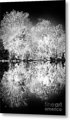 Natures Mirror Metal Print by John Rizzuto