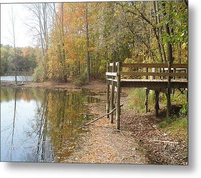 Nature's Patio Metal Print by Guy Ricketts