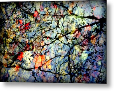 Natures Stained Glass Metal Print by Karen Wiles