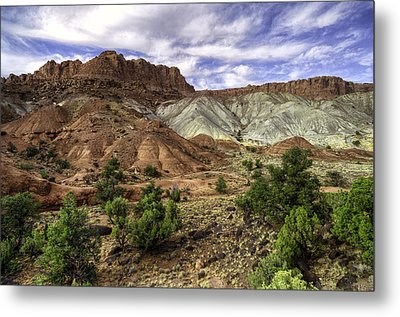 Natures Valley Metal Print by Stephen Campbell