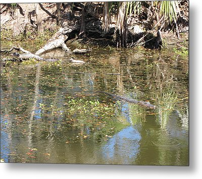 New Orleans - Swamp Boat Ride - 121251 Metal Print by DC Photographer