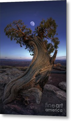 Night Guardian Of The Valley Metal Print by Marco Crupi