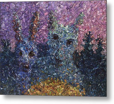 Night Offering Metal Print by James W Johnson