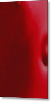Nipple And Navel Metal Print by Stefan Kuhn