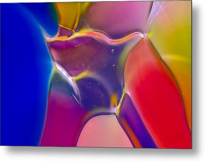 Noble Colors Metal Print by Omaste Witkowski