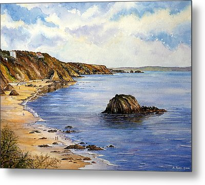 North Beach  Tenby Metal Print by Andrew Read