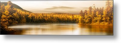 Northern Maine Metal Print by Bob Orsillo