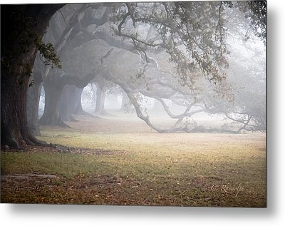 Nothing Gold Can Stay Metal Print by Cheri Randolph