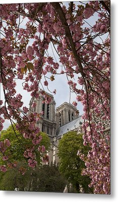 Notre Dame 1 Metal Print by Art Ferrier