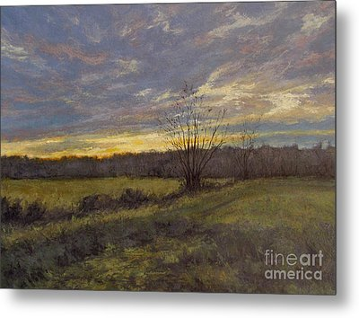 November Sunset Metal Print by Gregory Arnett