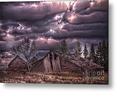 November Visits The Hollander Farm Metal Print by The Stone Age