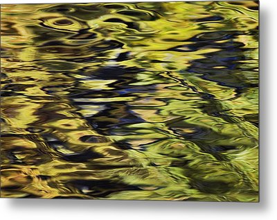 Oak And Maple Trees Reflections In Metal Print by Thomas Kitchin & Victoria Hurst