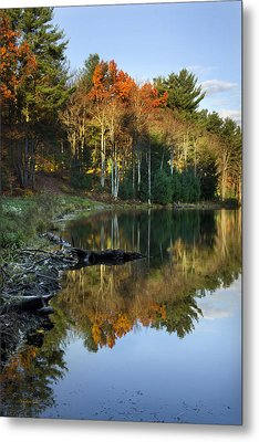 Oakley Corners State Forest Metal Print by Christina Rollo