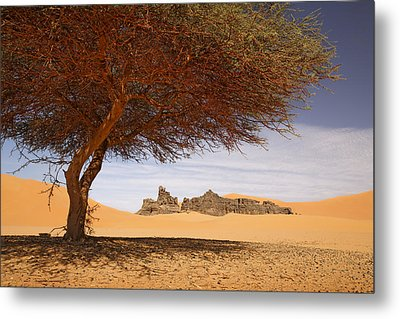 Oasis In Sahara Metal Print by Dominique Dubied
