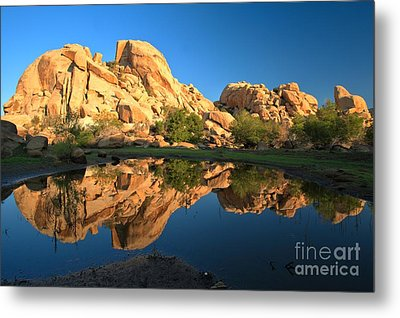 Oasis Reflections Metal Print by Adam Jewell