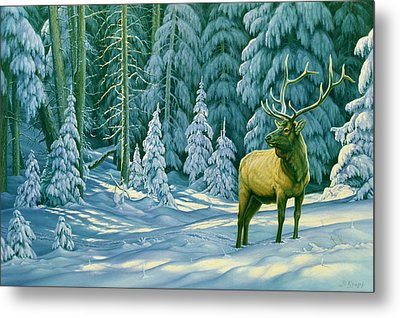 October Snow Metal Print by Paul Krapf
