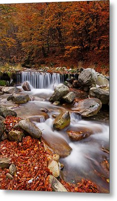 October Stream Metal Print by Mircea Costina Photography
