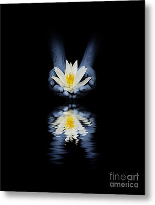 Offering Of The Lotus Metal Print by Tim Gainey