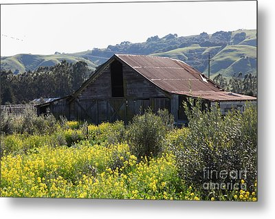 Old Barn In Sonoma California 5d22232 Metal Print by Wingsdomain Art and Photography
