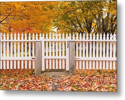 Old New England White Picket Fence Metal Print by Edward Fielding