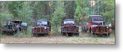 Old Rusty Cars And Trucks On Route 319 Metal Print by Panoramic Images