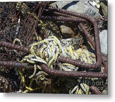Old Trap  Metal Print by Minnie Lippiatt