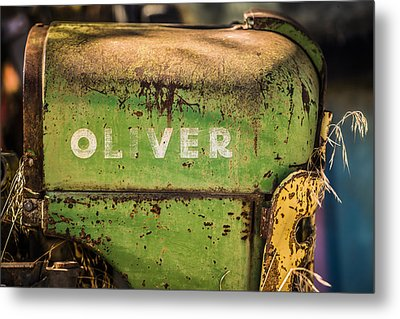 Oliver Metal Print by Steve Smith