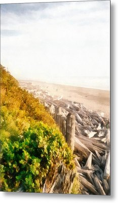 Olympic Peninsula Driftwood Metal Print by Michelle Calkins
