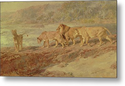 On The Bank Of An African River Metal Print by Briton Riviere