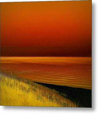 On The Shore Metal Print by Michelle Calkins