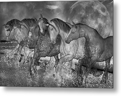 One With The Sea Metal Print by Betsy C Knapp