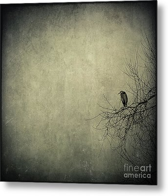 Only One Metal Print by Annie Lemay