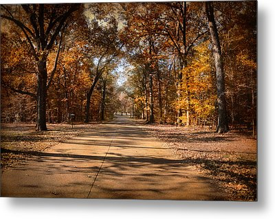 Open For Beauty Metal Print by Jai Johnson