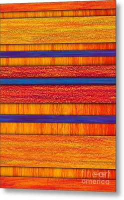 Orange And Blueberry Bars Metal Print by David K Small