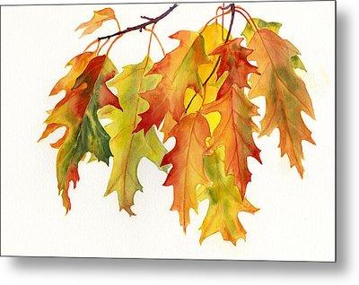 Orange And Yellow Oak Leaves Metal Print by Sharon Freeman