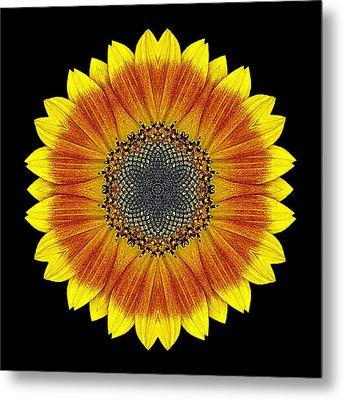 Orange And Yellow Sunflower Flower Mandala Metal Print by David J Bookbinder